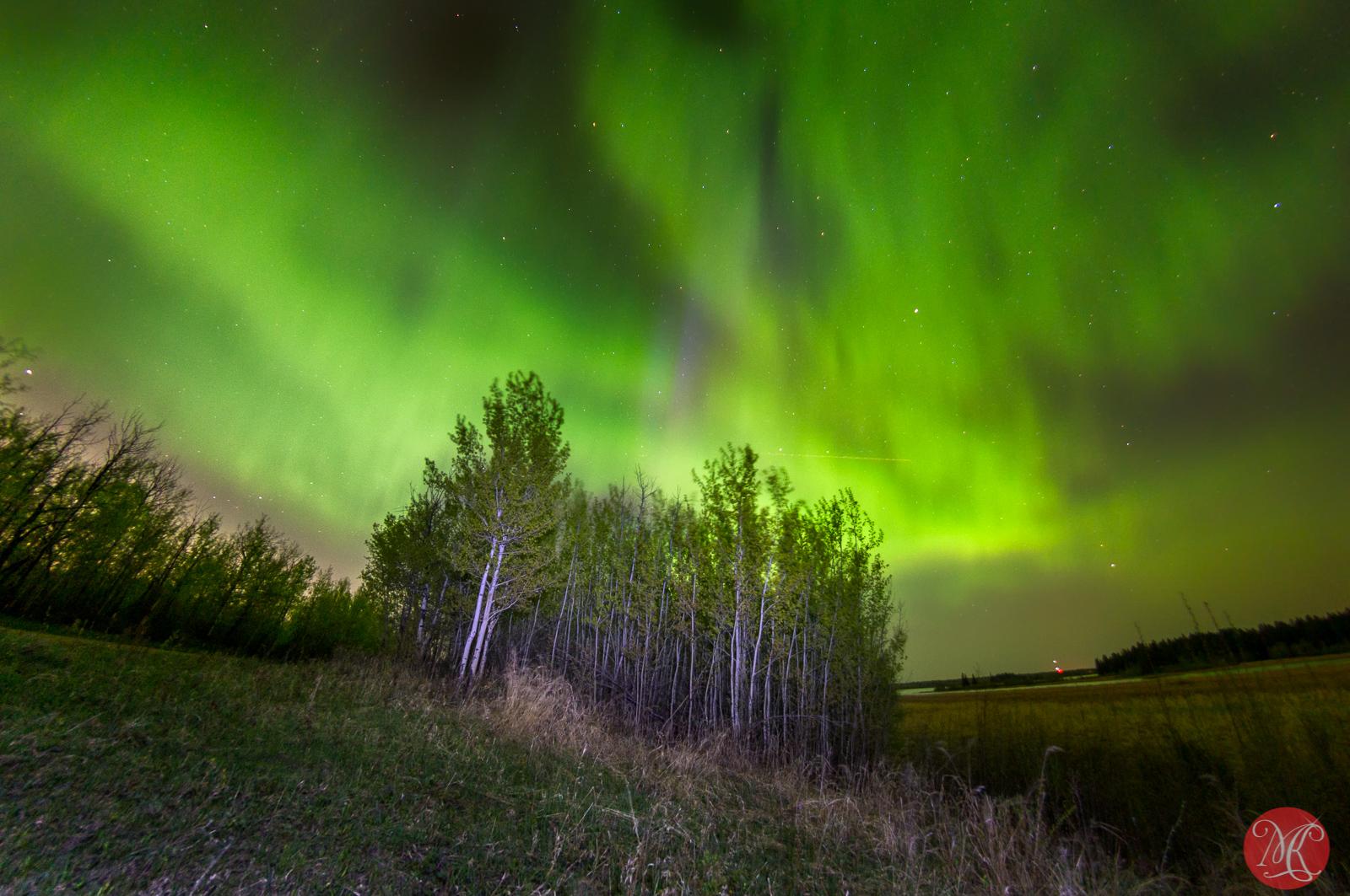 Amazing Aurora night 3