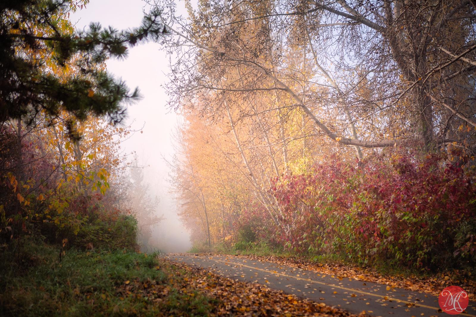 Autumns past .. 4