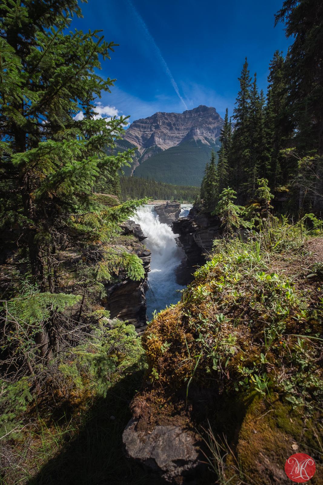 Always pretty Athabasca Falls