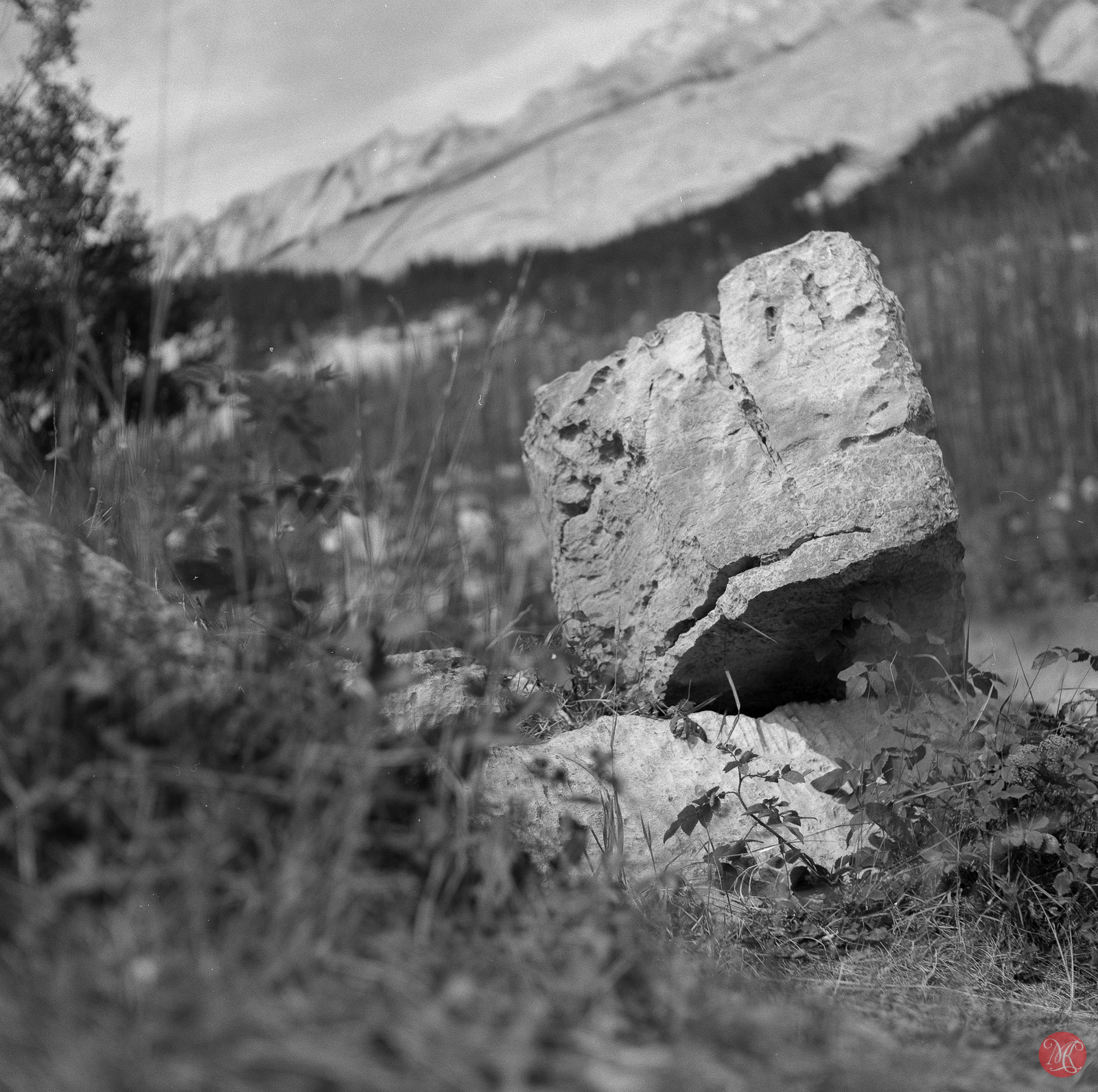 08 rocks at medicine lake jasper.jpg