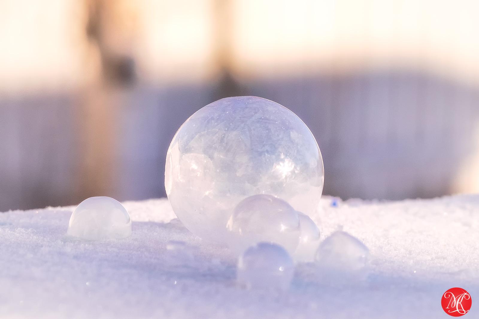 Frozen world 3