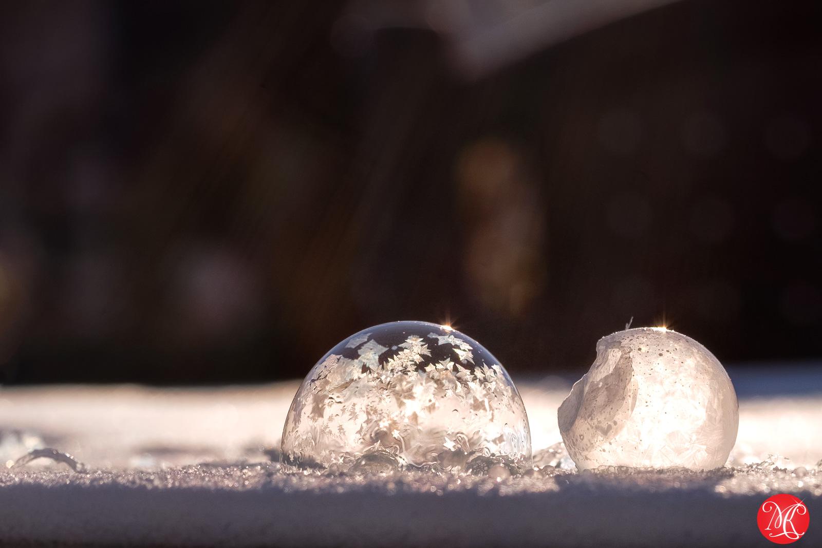 Frozen world 6