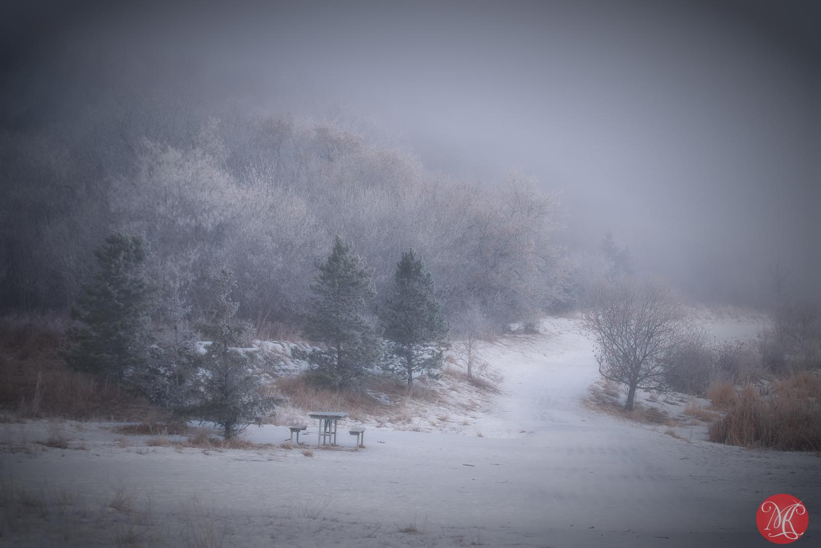 Silence of the fog