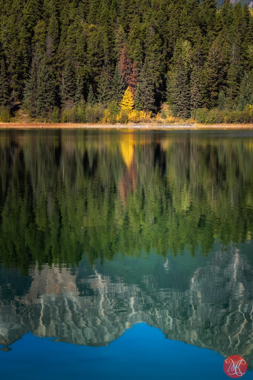 Fall in Jasper 6