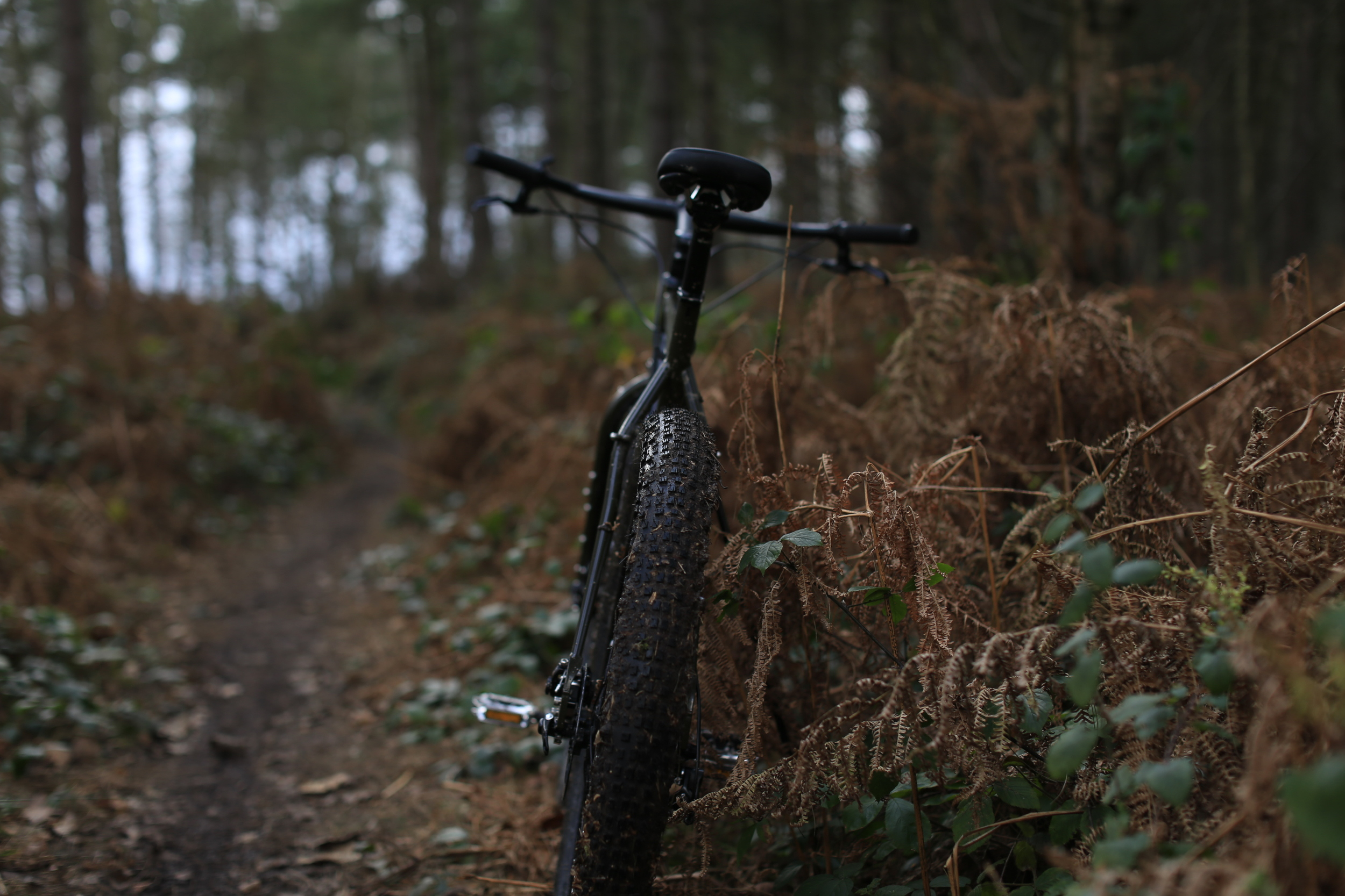 surly, surly ecr, woods, adventure, cycling, bicycle, bikes, mountain bike, cycle gear