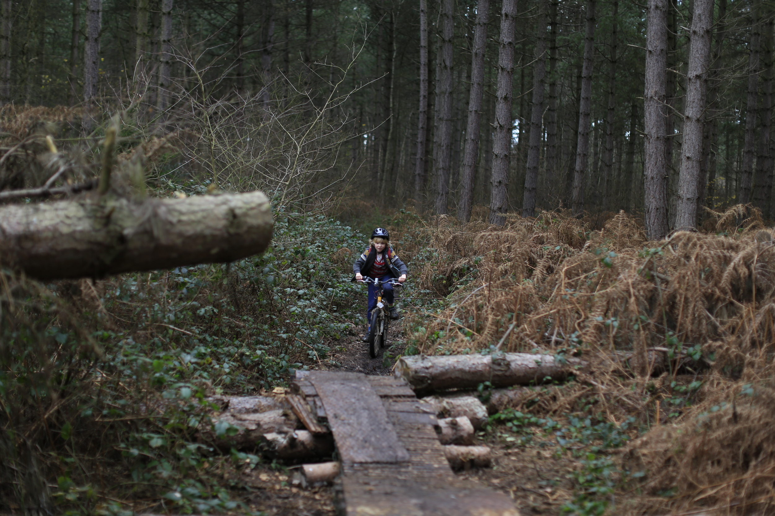 singletrack, woods, biking, cycle gear, canon, canon 6d, photo, photography, off road, nature