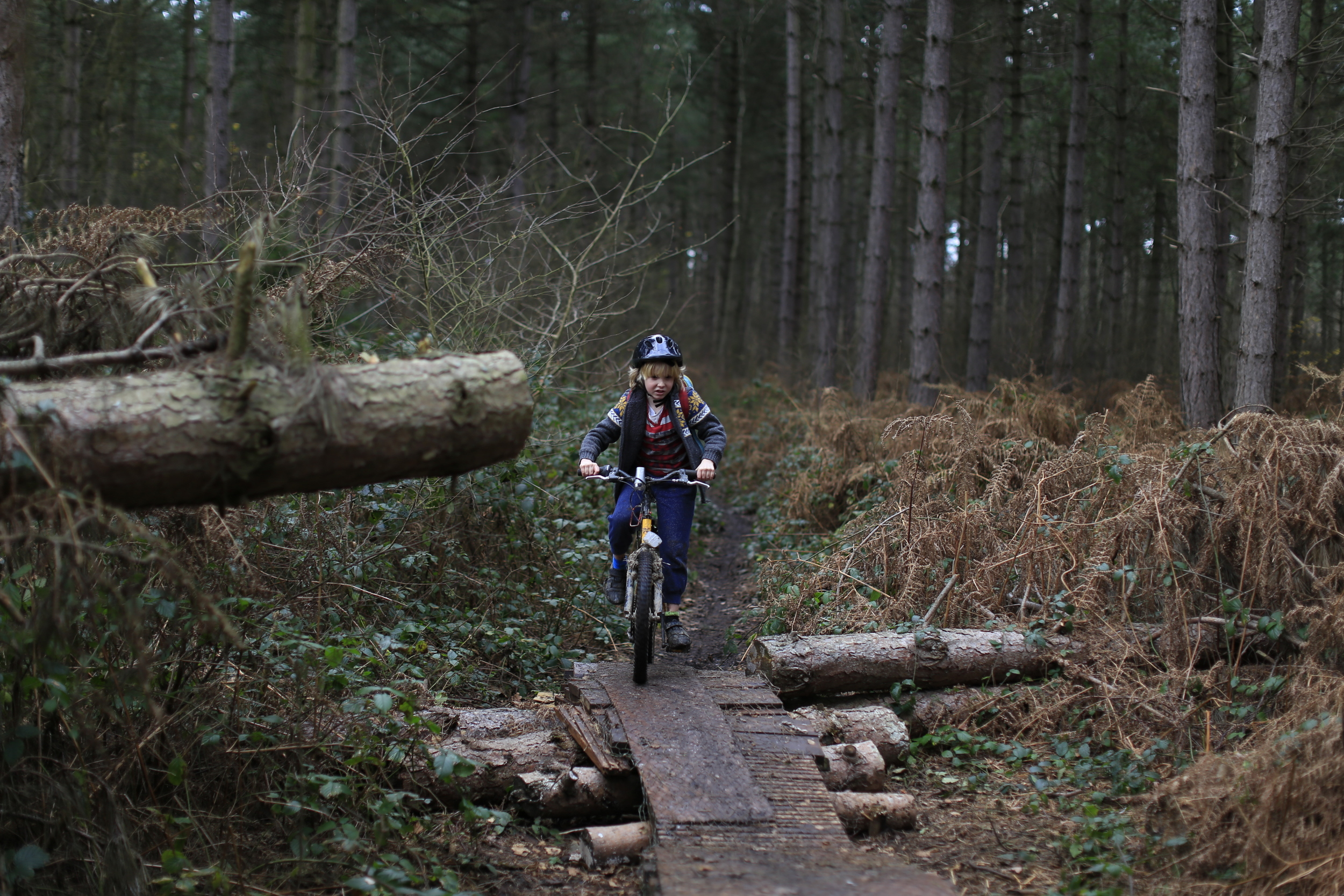 singletrack, woods, ramps, mountain biking, mtb, maxxis, woods, nature, photography, review, blog