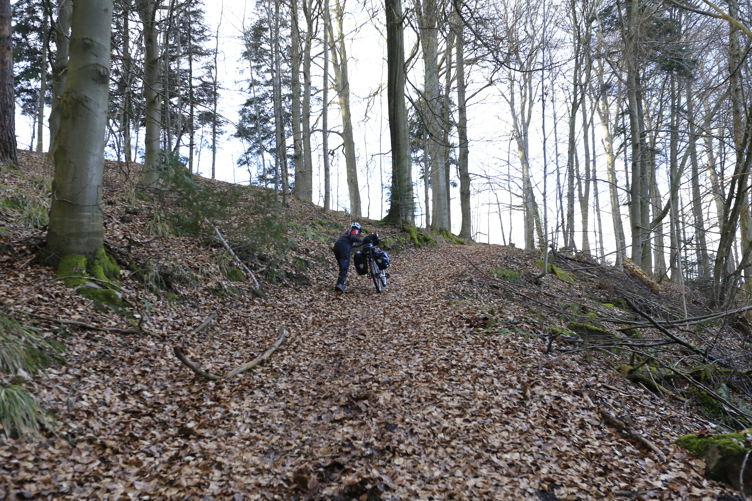 bikepacking, germany, black forest, bike crossing, photography, bicycle touring, cycle