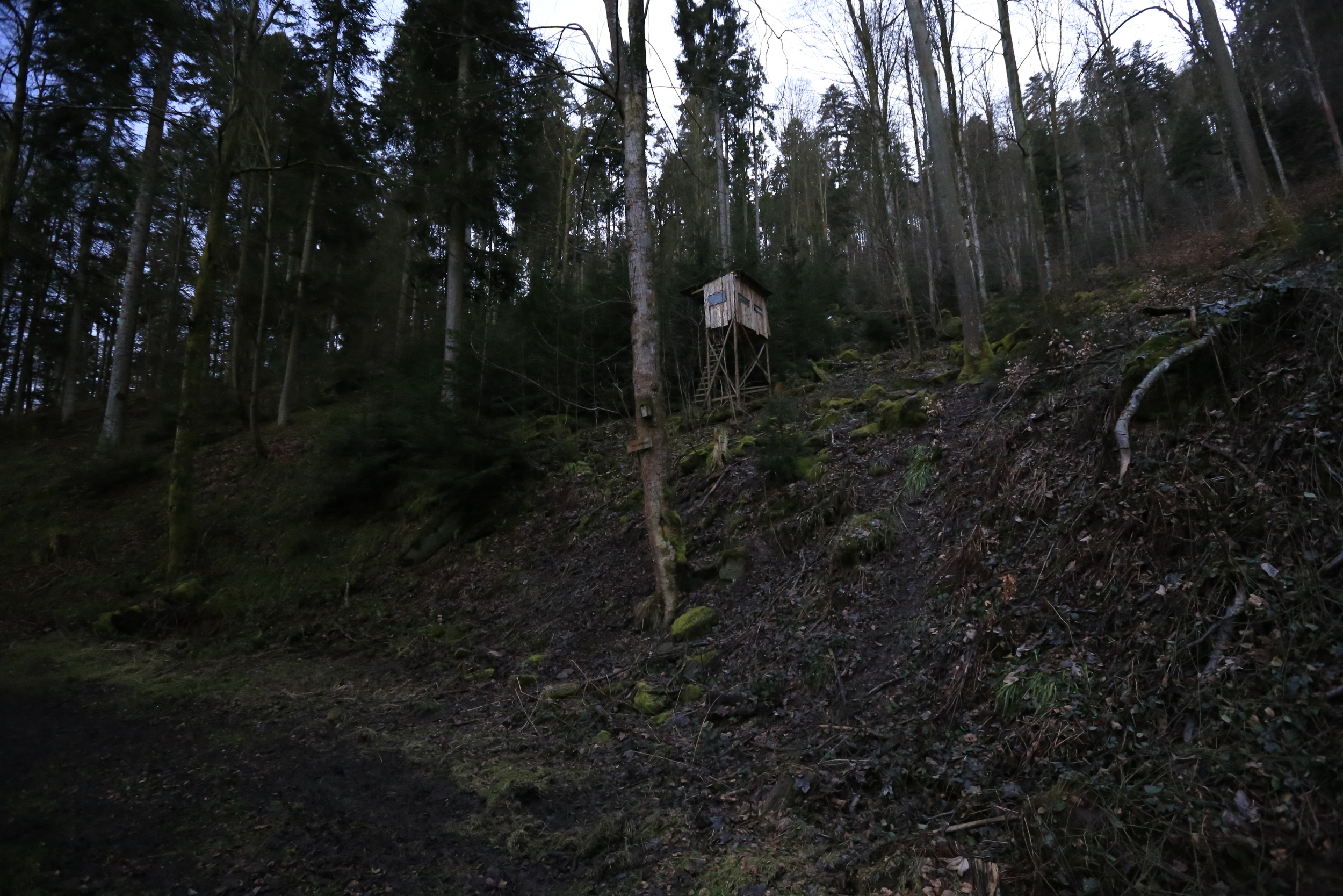 These often precarious watch towers are a familiar site in the Black Forest.