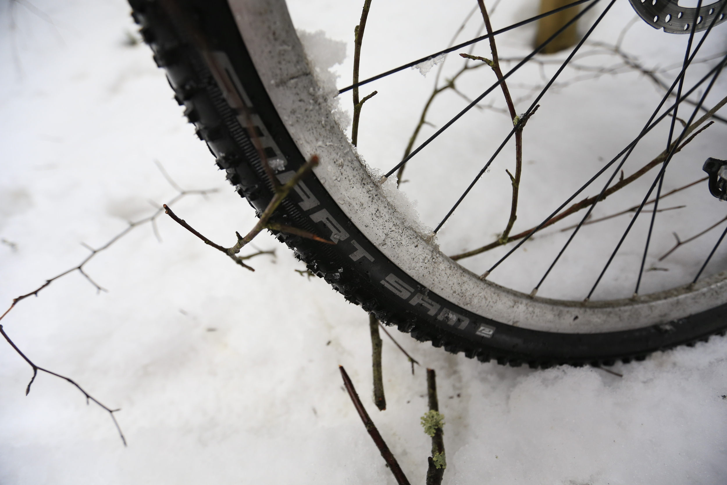 This included some new 29er   Schwalbe Smart Sam   tyres.