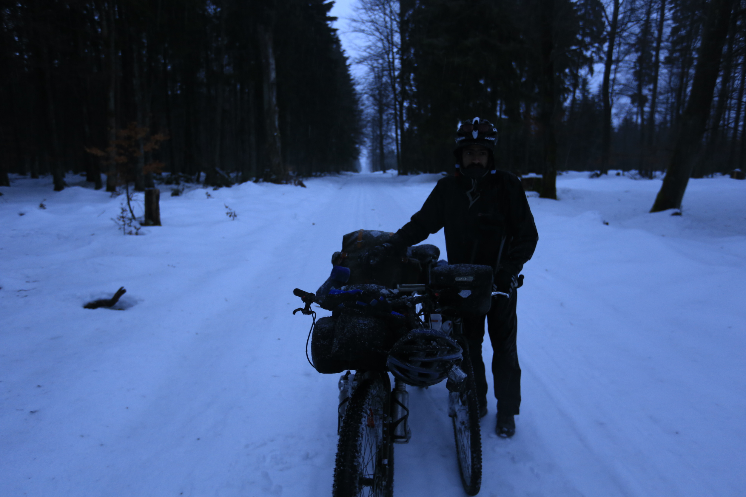 fat bike, surly, surly ecr, giant, giant hybrid, bicycle touring, cycle touring, adventure, snow, singletrack