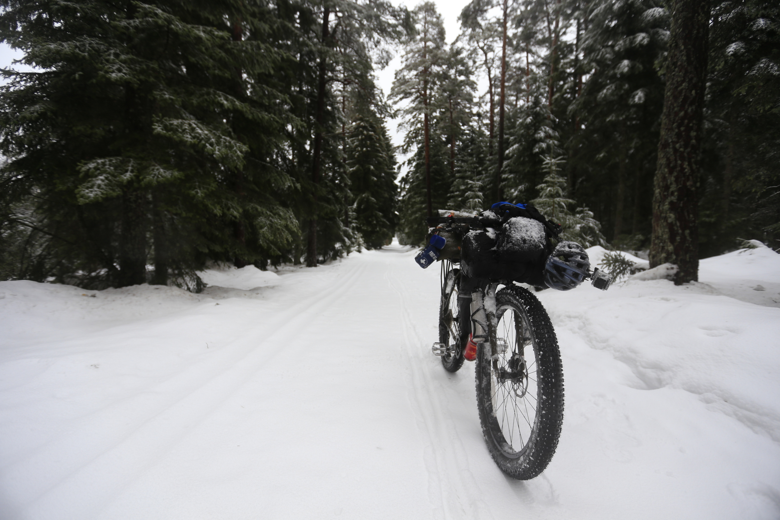 surly, surly ecr, fat biking, knards, snow, singletrack, woodland, black forest, germany, gopro, helmet, trangia, bicycle touring apocalypse, bicycle