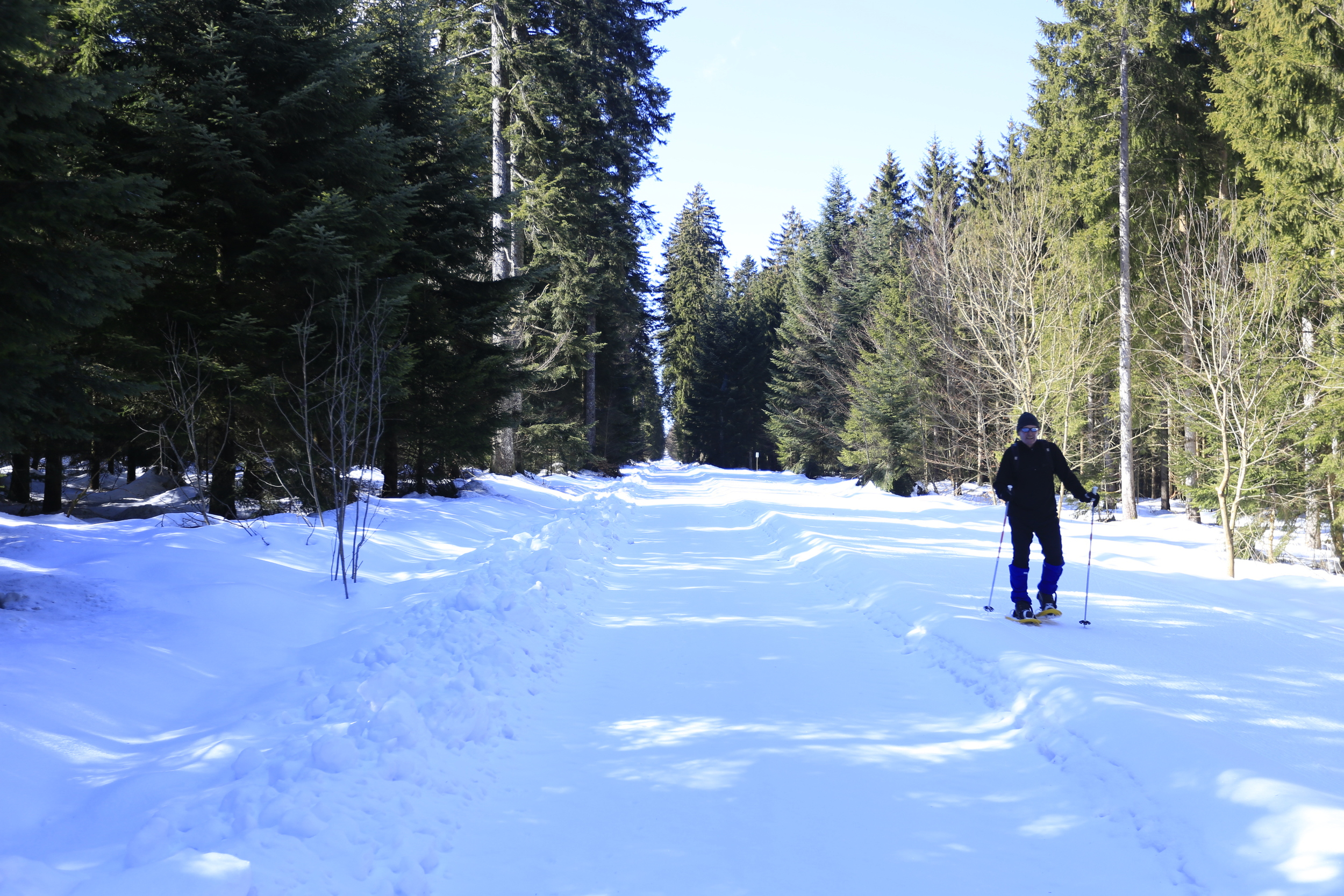 skiing, black forest, germany, bikepacking, cycle touring, bicycle touring apocalypse, cycling blog, blog, reviews, cycle gear, surly, surly ecr, ecr, fat biking, singletrack, adventure, cycle, ski resort germany