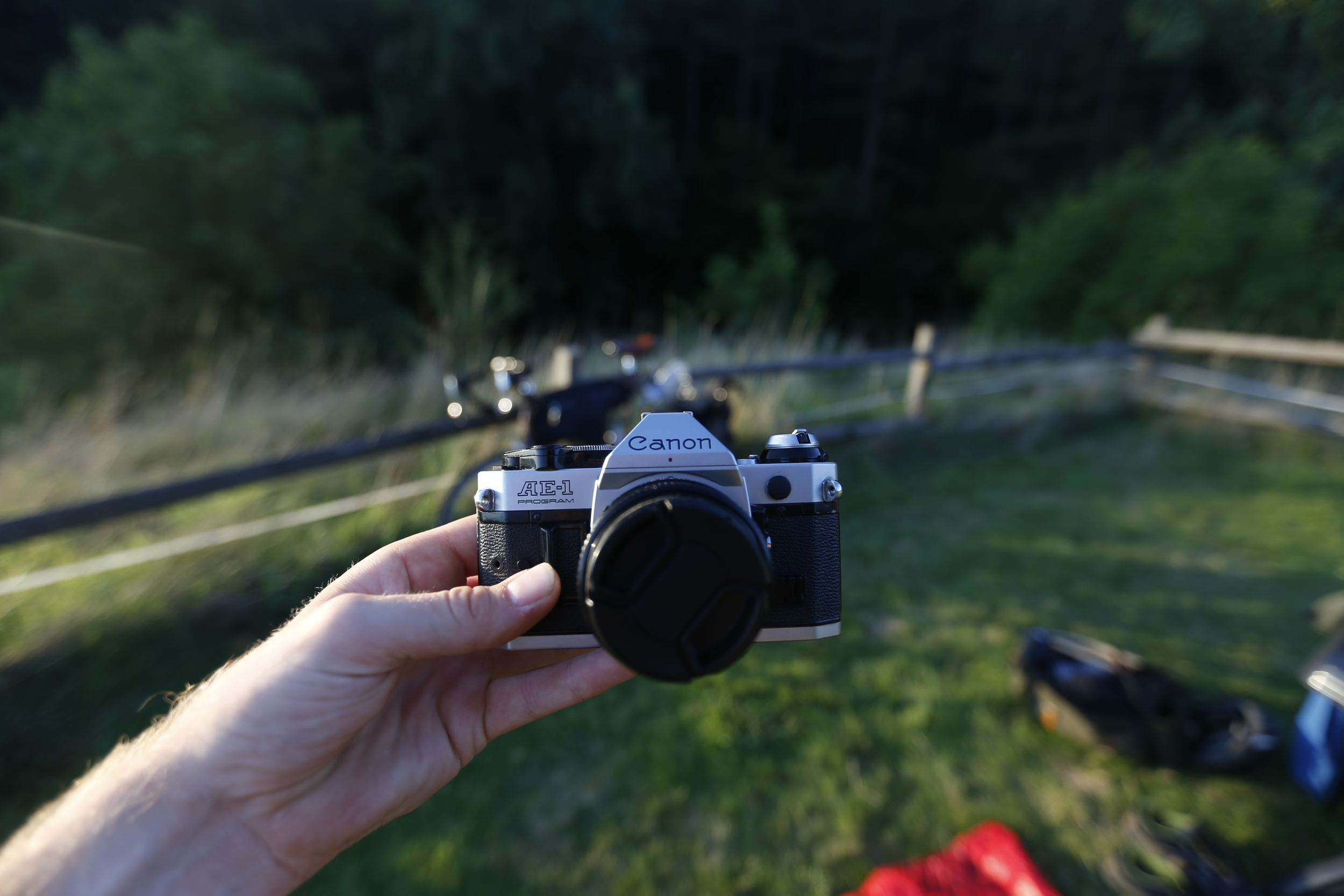 My faithful  Canon AE-1  film camera.