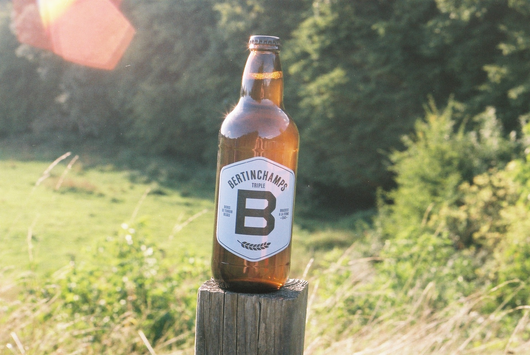 beer, beer blog, beer photography, bikepacking beer, brewery, ipa, canon, canon ae-1, 35mm, film, film is not dead, shoot film, bicycle touring apocalypse, photography blog, food, foodie, food blog