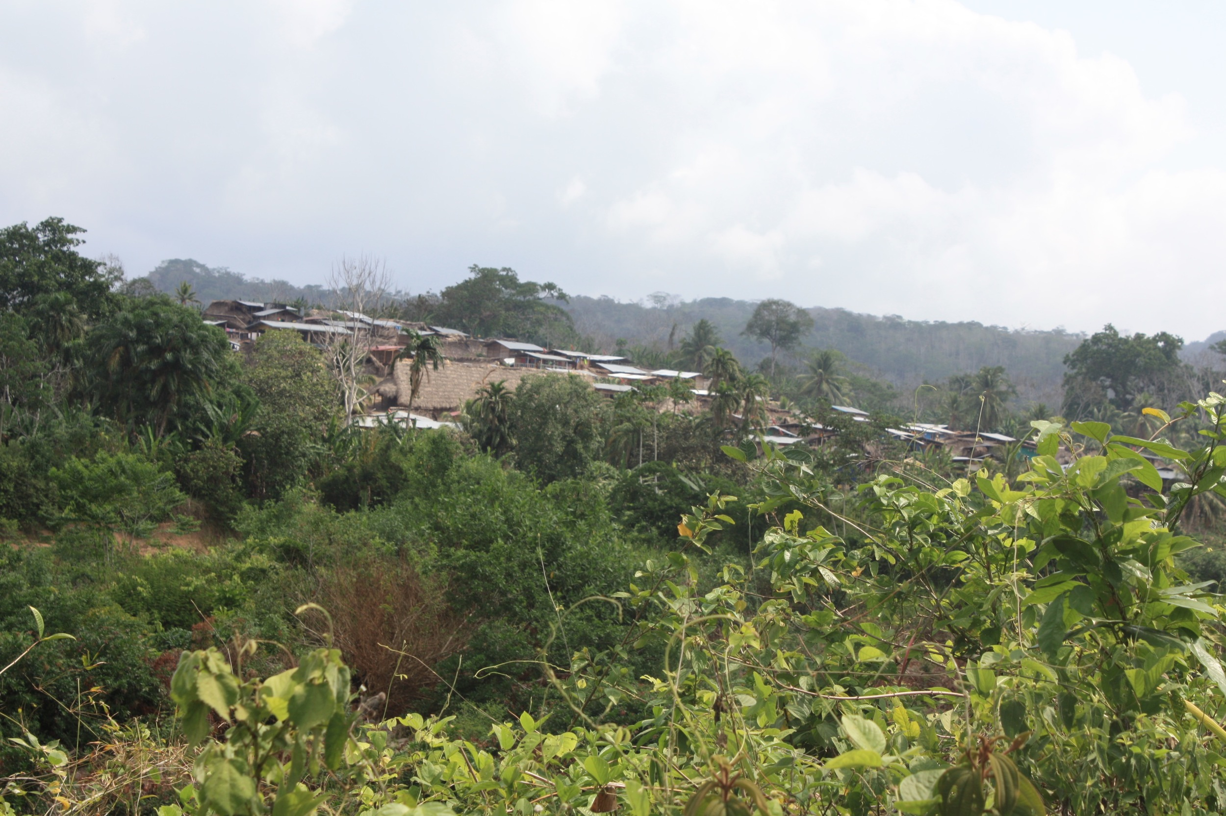 The village of Wala from the road.