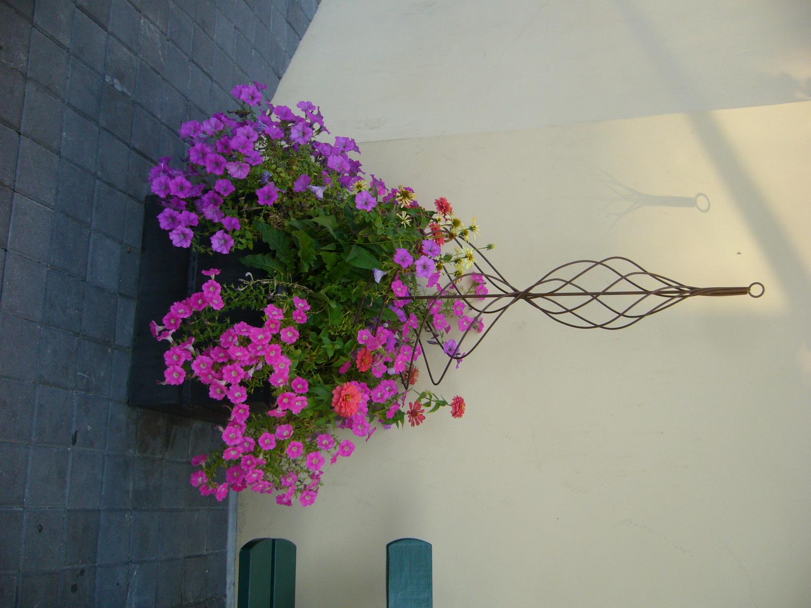 Spiral Flower_Pic.jpg