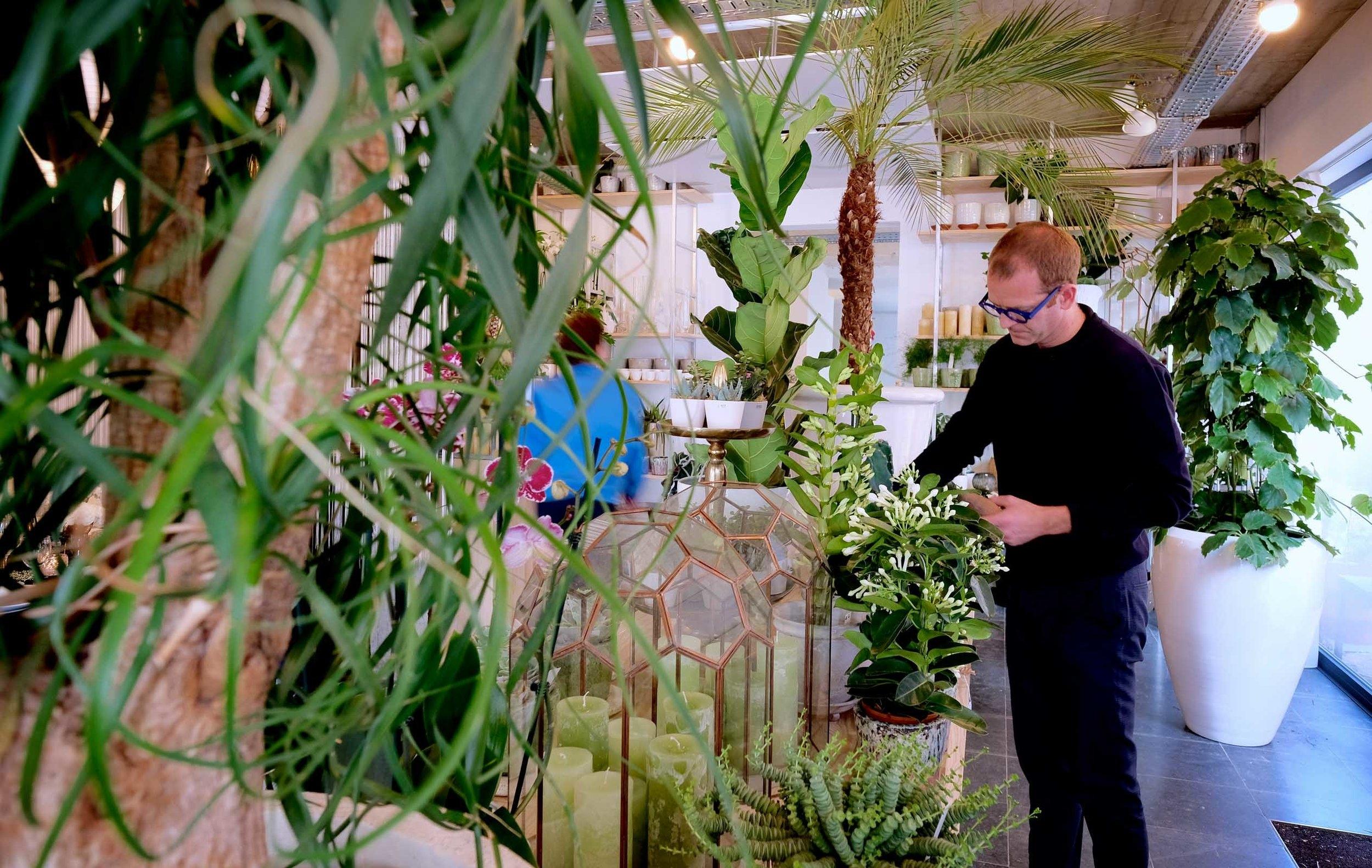 Degroote Bloemen - atelier