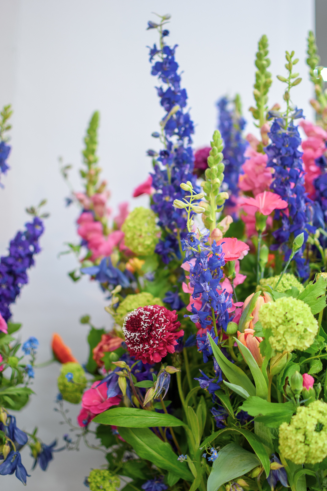 Kleurrijke communie bloemen - Degrootebloemen.be