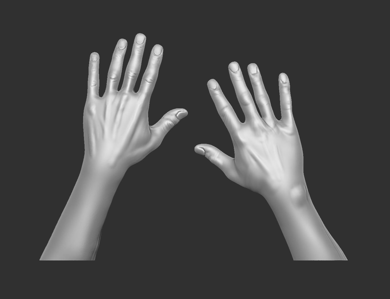 A basic rough sketch of the hero hands in Zbrush.