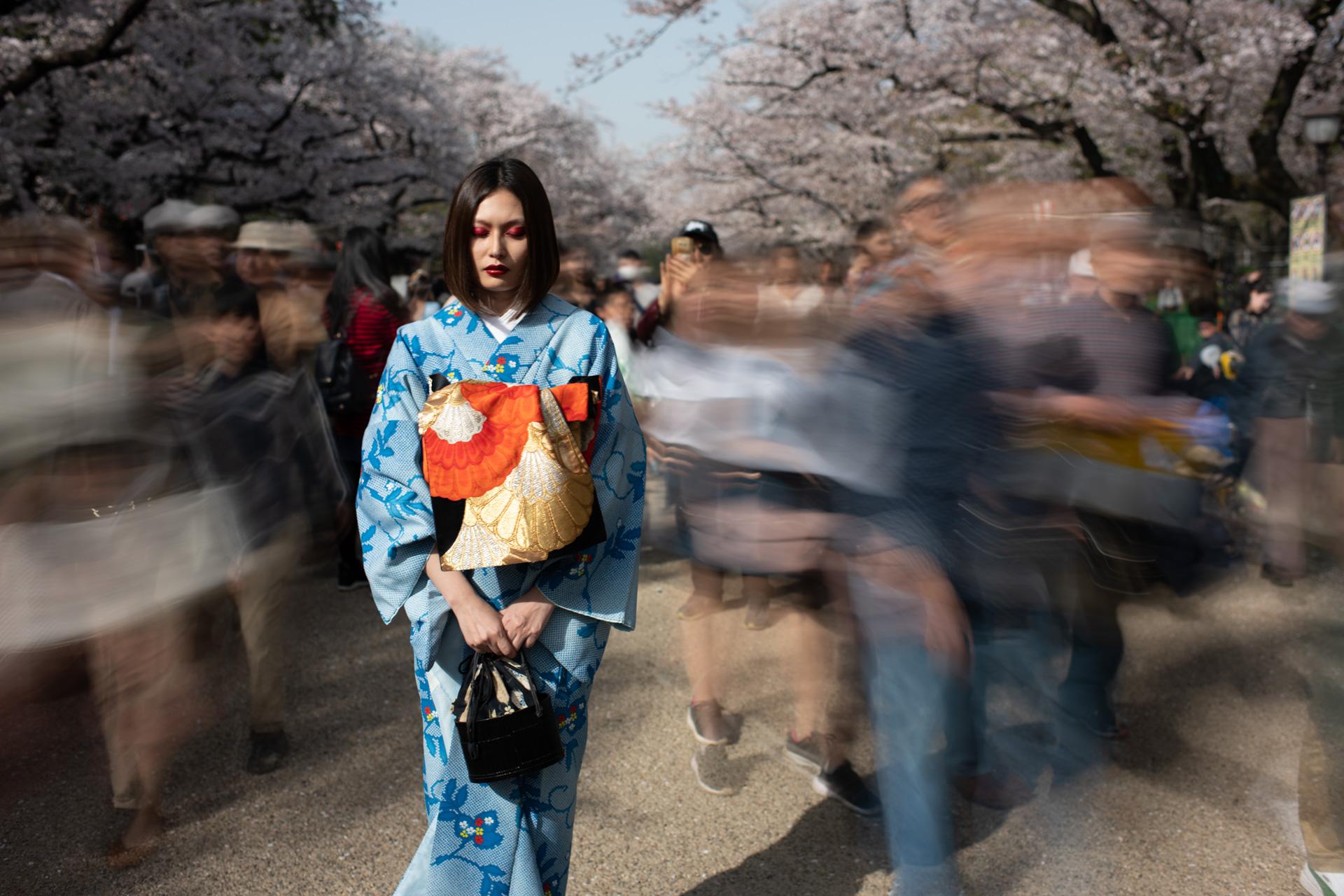 Still Motion_Sakura Nora 2018-2018.jpg