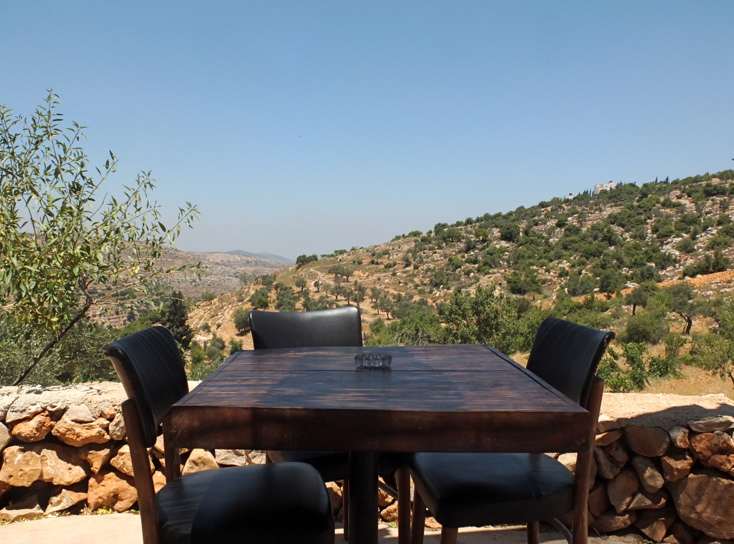 Observer Magazine (UK), 1/24/16  The view from Hosh Jasmin  (Beit Jala, Palestine)
