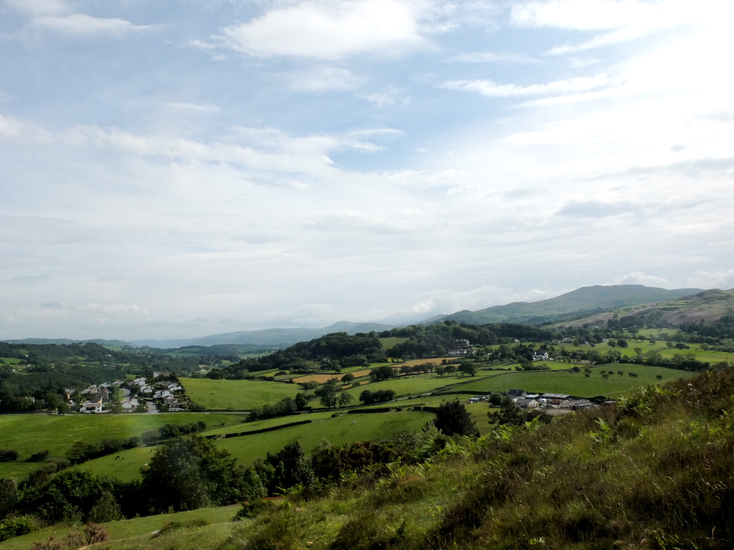 Countryside  Conwy, Wales  6/2014