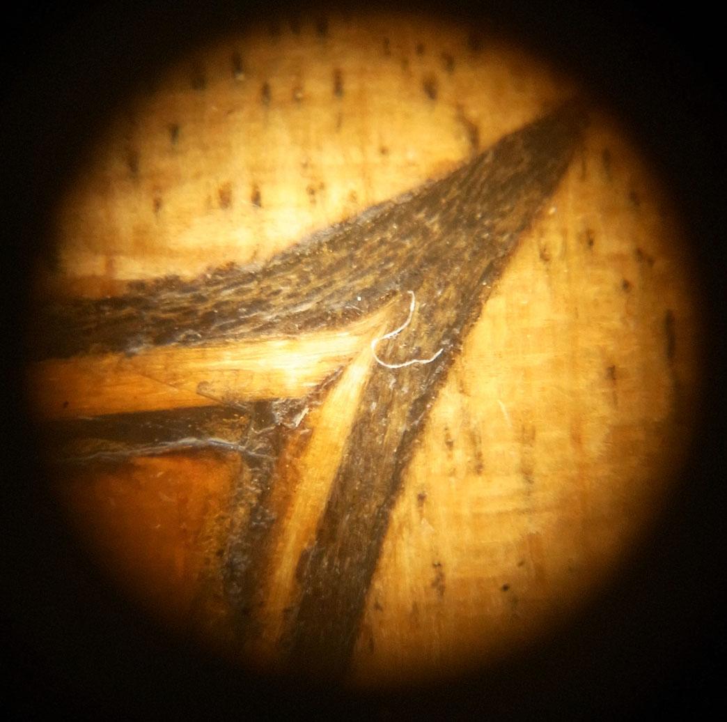 Strad microscop br.jpg