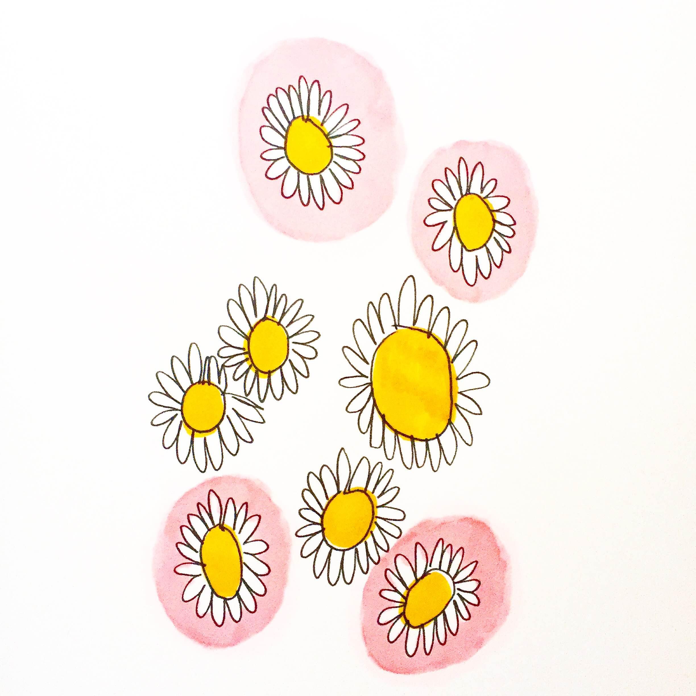 "regina schilling // daisies //4"" x 6"" //ink & marker on paper //2016"