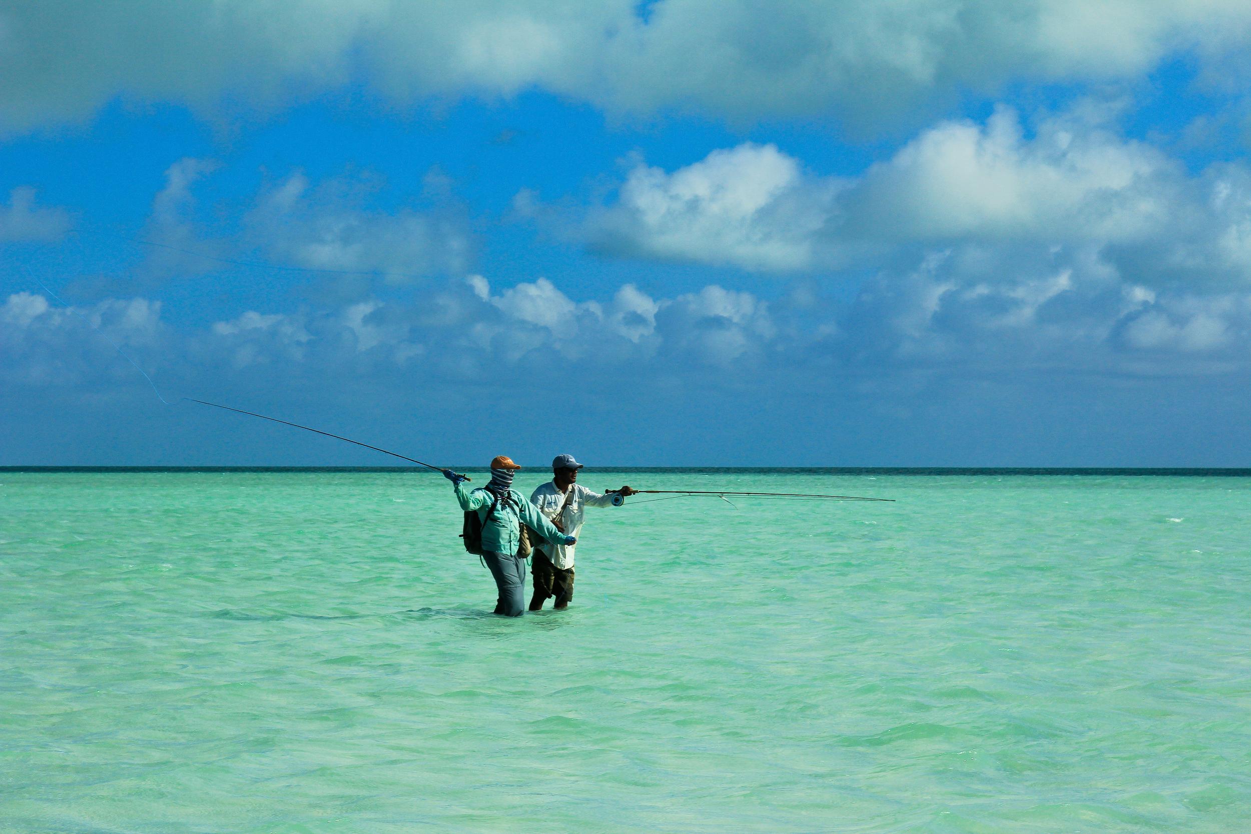 Ult-Atoll.15.jpg