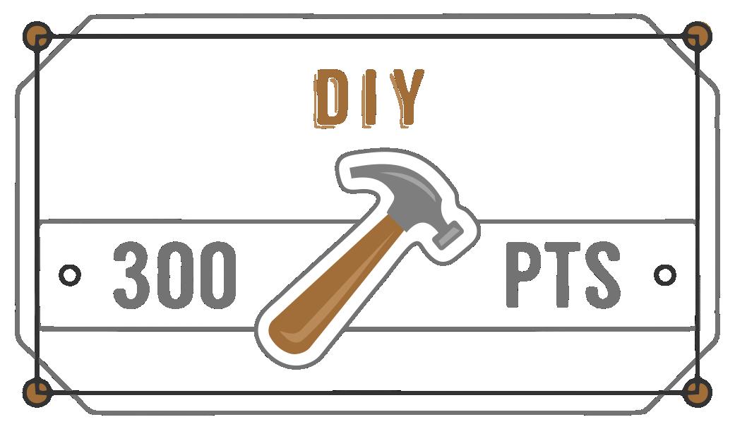 DIY300.png