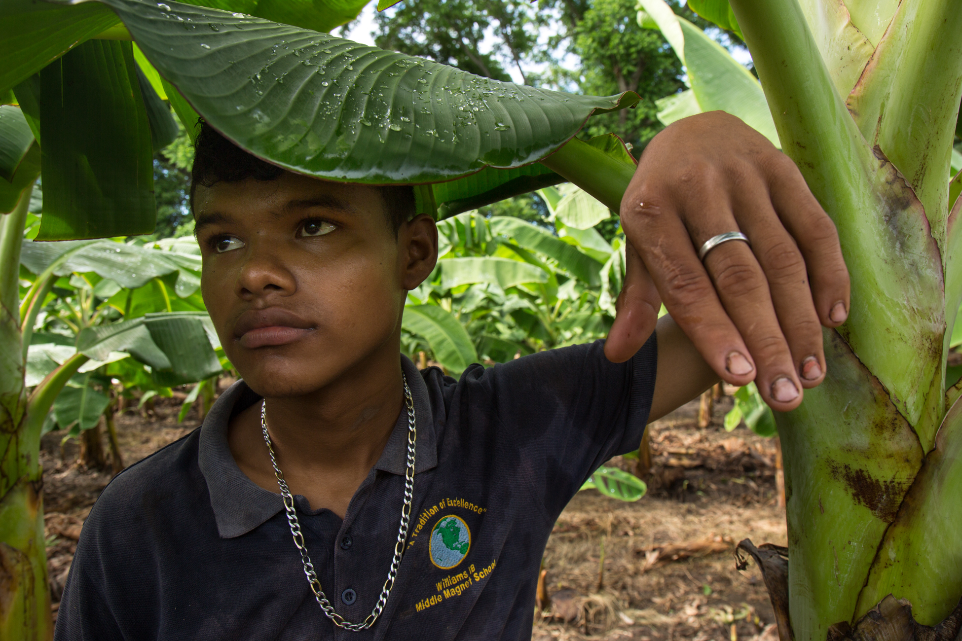 Eliezer Jose Ugoster, 16, at his father's plantain plantation, in Santa Teresa, Ometepe. Their land is under threat to be confiscated by the governemnt if the Grand Canal project goes through.