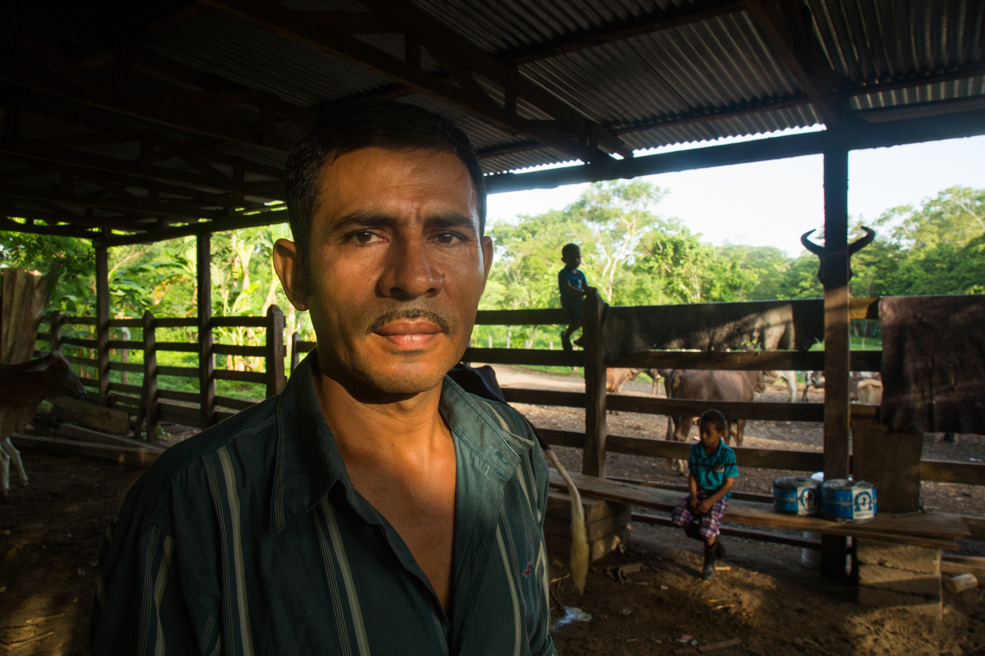 Javier Carmona teaches his youngest sons Bernni and Jelver to milk the cows the morning before a protest against the Nicaraguan Canal. Javier, a community leader and organizer with the Consejo Nacional which is fighting against the Ley 840 and the proposed Canal project by the governemnt in order to protect their land