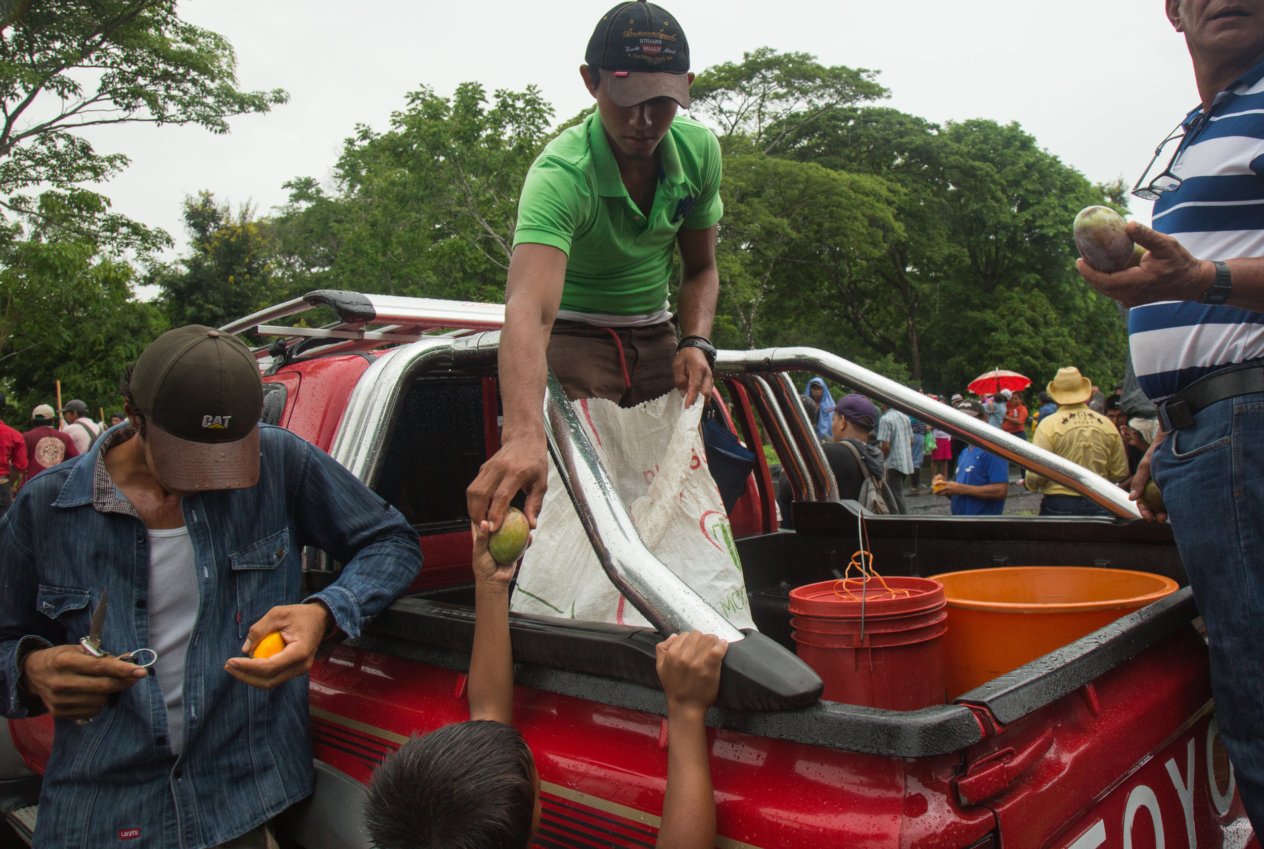 Members of the Consejo Nacional pass out mangos to hungry protesters at a protest against the Ley 840 and the Nicaraguan Canal project which could expropriate tens of thousands of familes' property's most of whom are small farmers, or campesinos. The protest in El Tule is on the same site as the protest on December 24, 2015 when police violently dispersed protesters with rubber bullets and tear gas, wounding multiple poeple including shooting out the eye of one man, and arresting more than 25 people. El Tule, Rio San Juan, Nicaragua