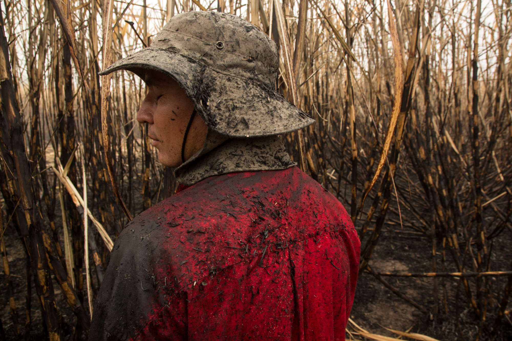 A sugarcane cutter near Los Almendros, El Salvador covered in soot and charred cane one early morning.