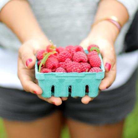 karla-diaz-cano-raspberries-2.jpg