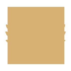 trip advispor.png