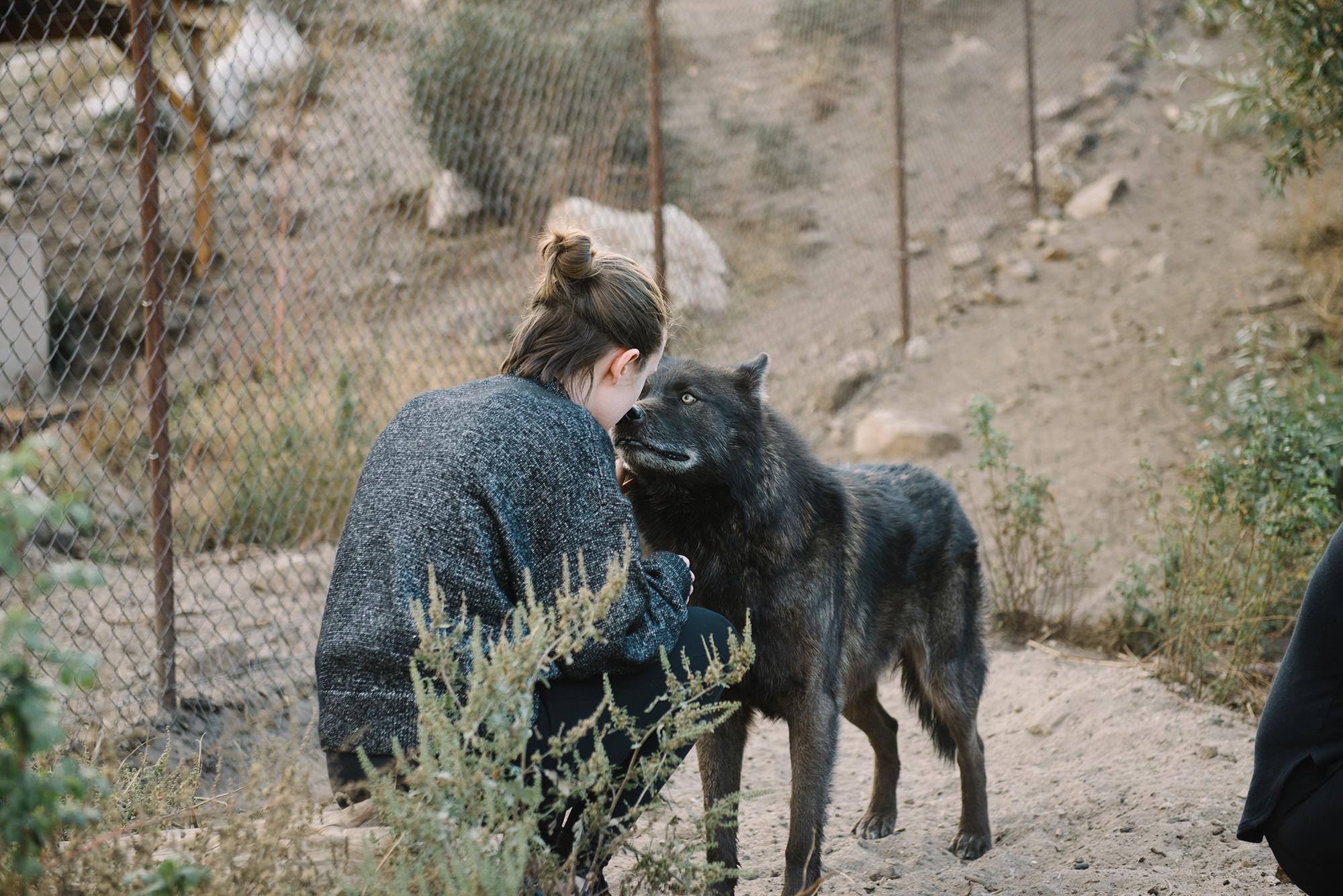 HowlAndRosePhoto_Documentary14.jpg