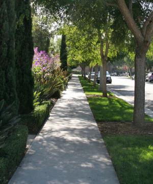 shady sidewalk