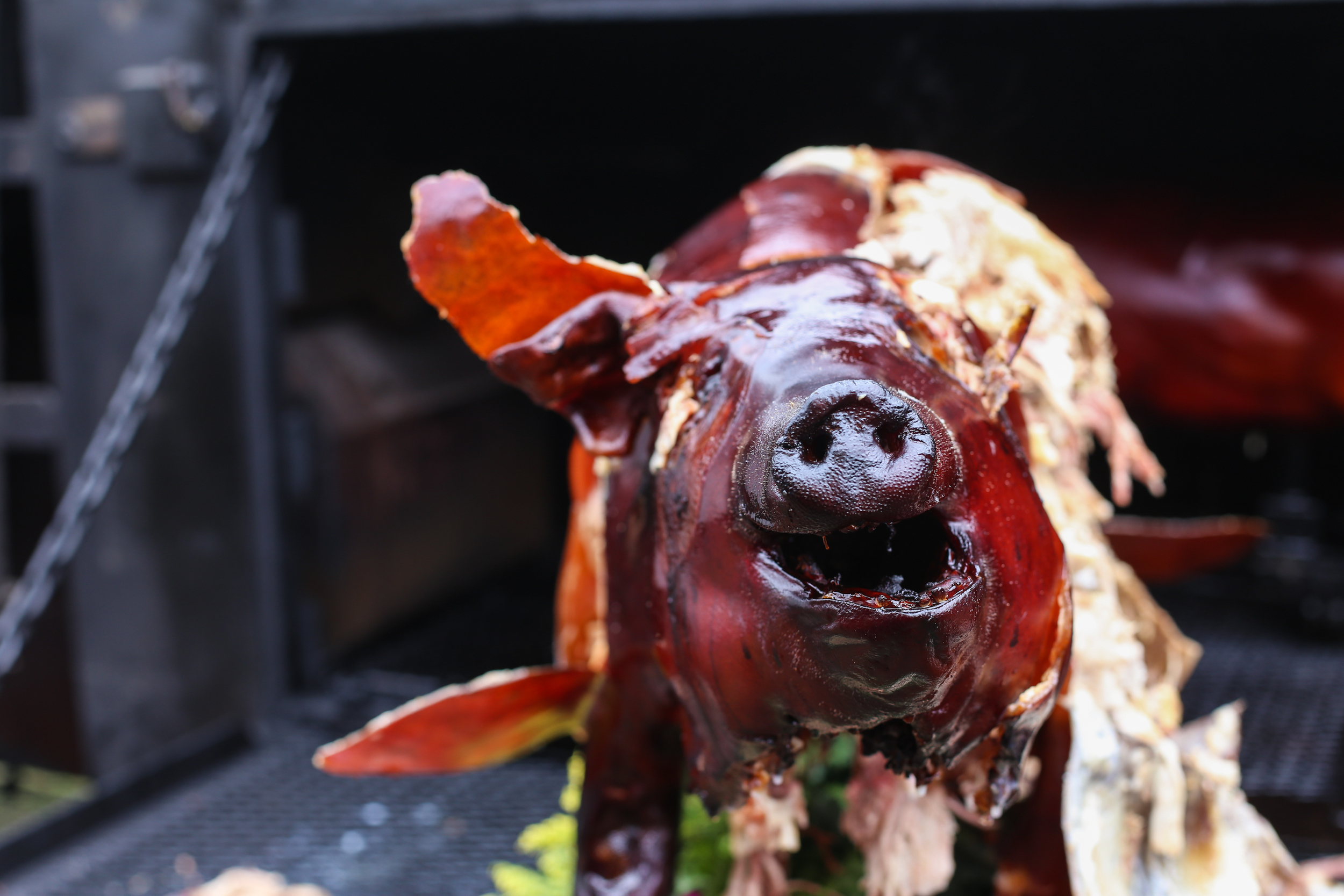 HIGH ON THE HOG: BEHIND THE SCENES AT THE MEMPHIS BBQ WORLD CHAMPIONSHIP  - THRILLIST