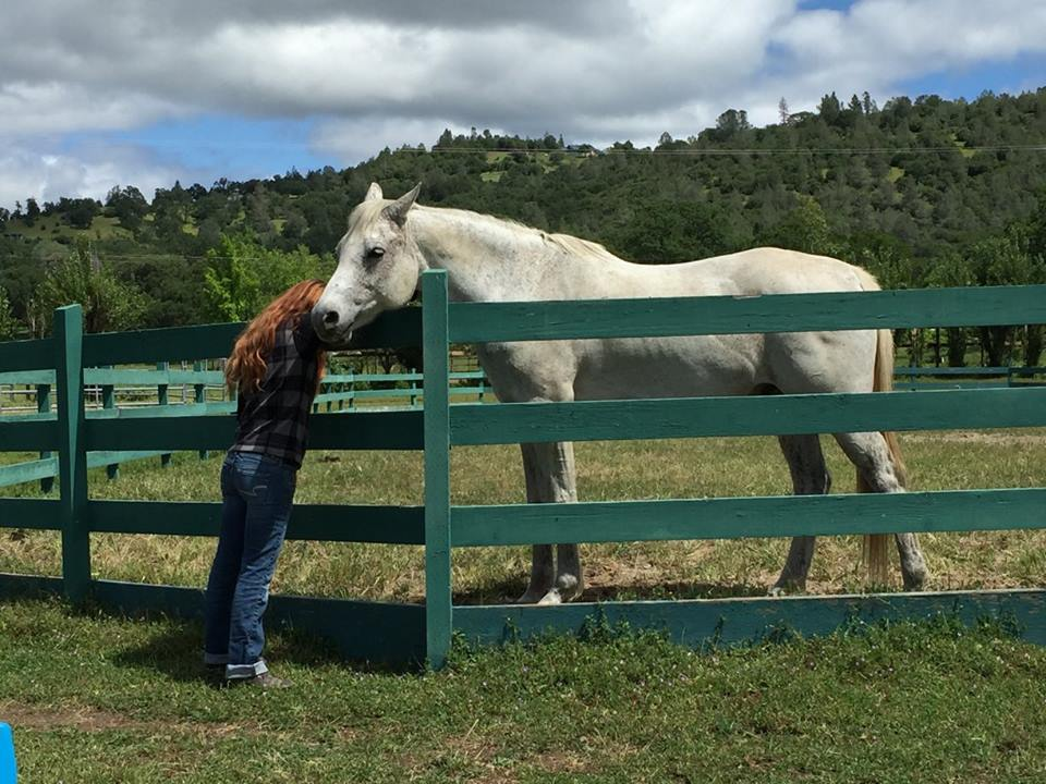 sharing sacred space with spirit, the horse
