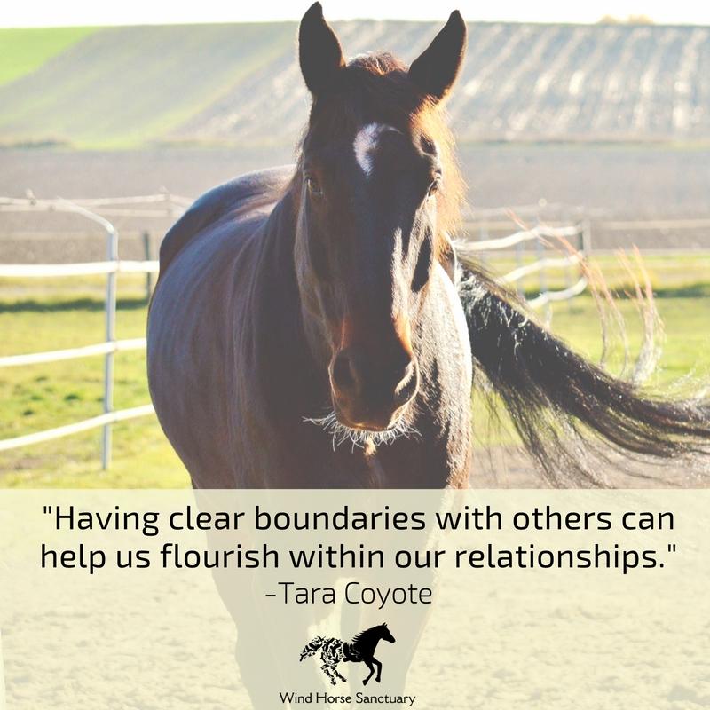 Learn Healthy Boundaries 2 - Wind Horse Sanctuary.jpg
