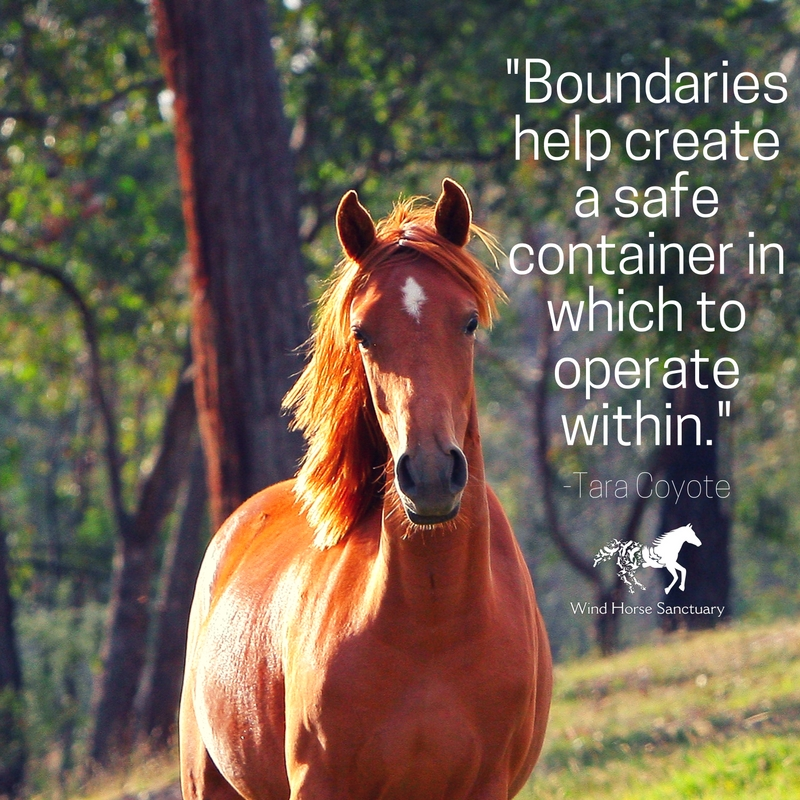 Learn Healthy Boundaries - Wind Horse Sanctuary.jpg