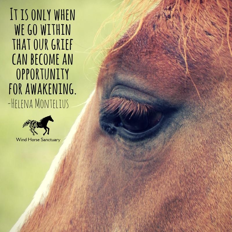 Grief Quote 4 - Wind Horse Sanctuary.jpg