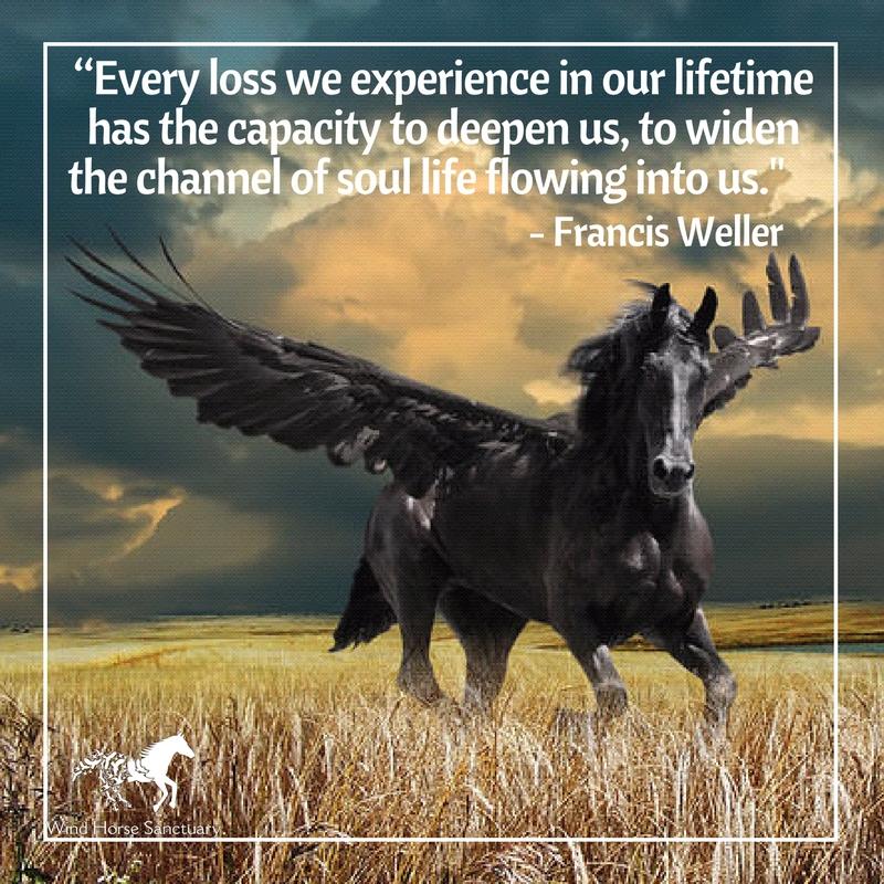 Grief Quote 6 - Wind Horse Sanctuary.jpg