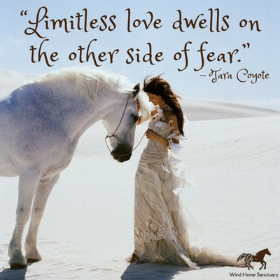 Limitless Love Quote - Wind Horse Sanctuary.jpg