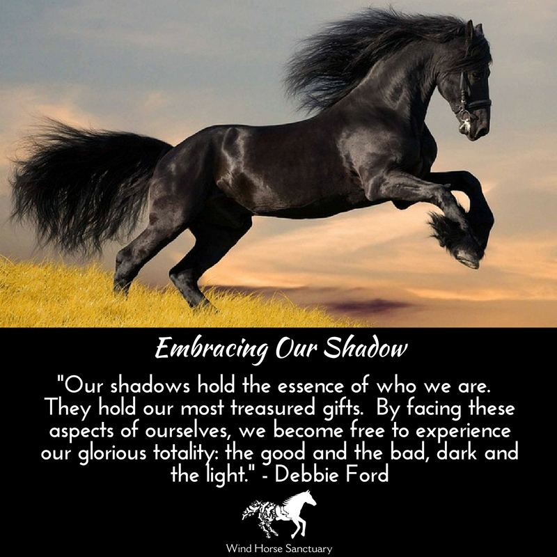 Embracing Our Shadow - Wind Horse Sanctuary.jpg
