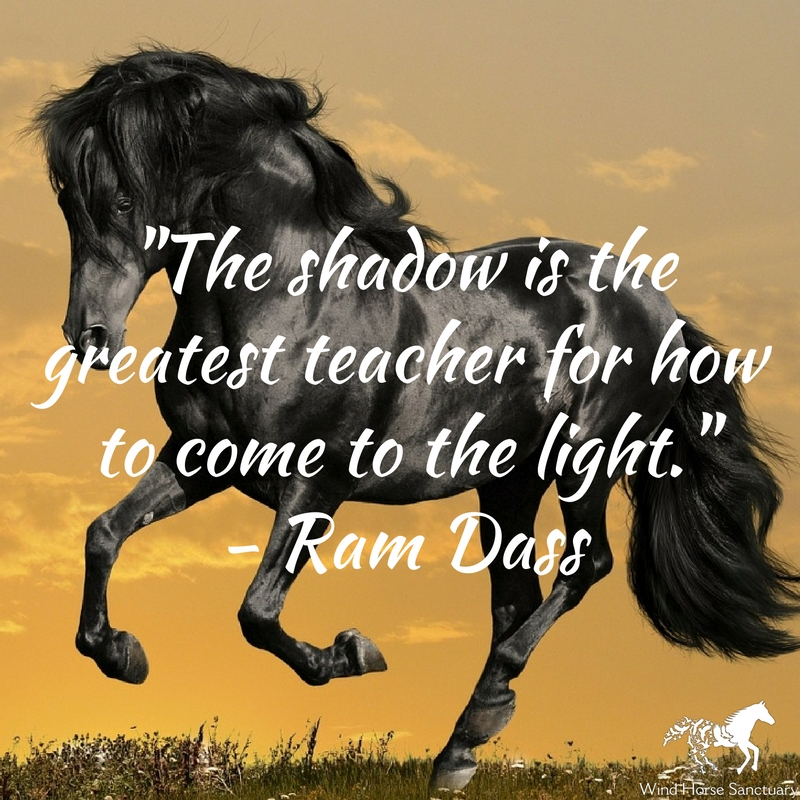 Embracing Our Shadow 3 - Wind Horse Sanctuary.jpg