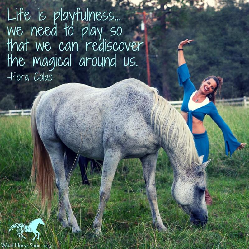 Inspiration - Play - Wind Horse Sanctuary.jpg