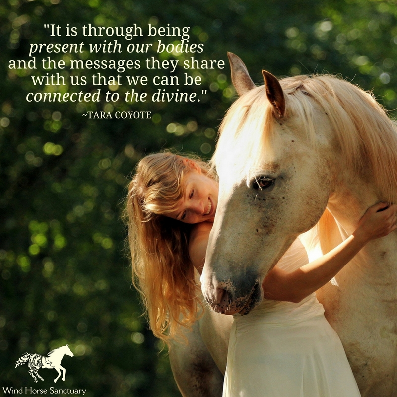 Moving Through Sacred Space 1 - Wind Horse Sanctuary.jpg